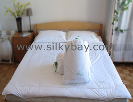 Pillow, Duvet and Mattress Pad